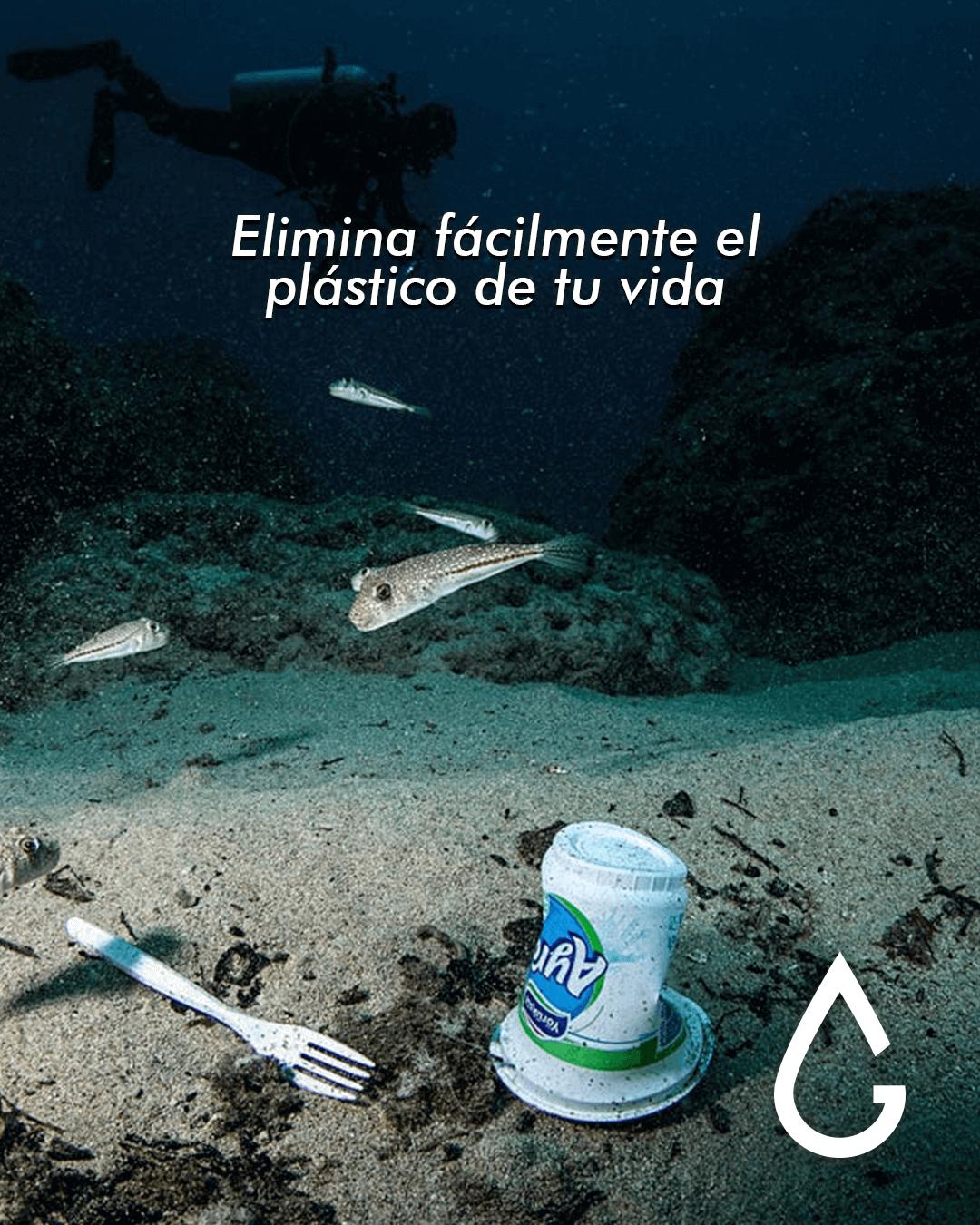 Elimina fácilmente el plástico de tu vida.